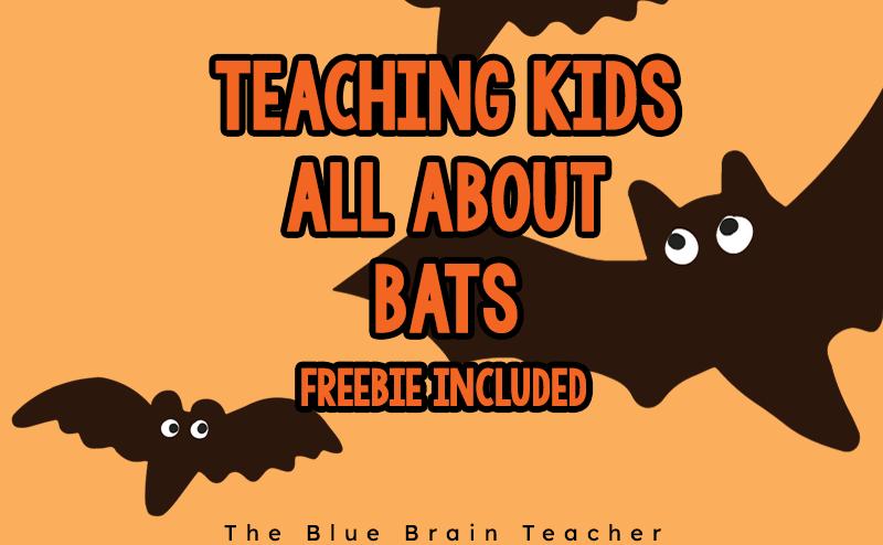 Bat Worksheet for Elementary Kids